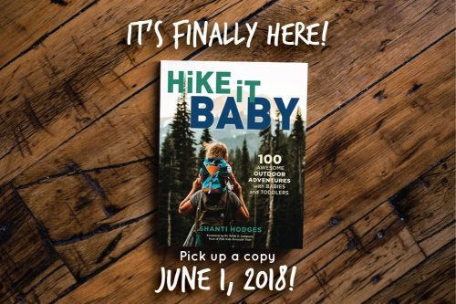 http://hikingmyway.com/wp-content/uploads/2018/04/HiBBookCoverMockup_wText-1-e1524023056746-500x333.jpg